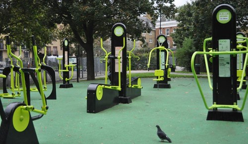 Example of outdoor gym equipment, pigeon optional