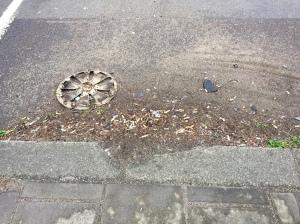 160405 GWRd Wood Lane detritus