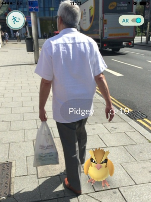 Pokemon Pidgey almost a Size 8 gonner on the way to TfL